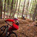 biciclette in un sentiero di montagna