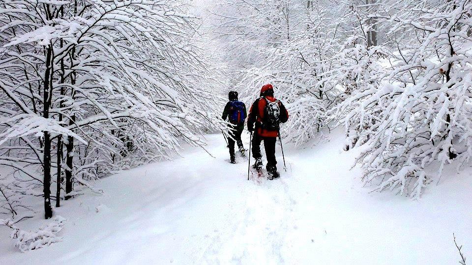 Una caratteristica camminata invernale nella faggeta amiata