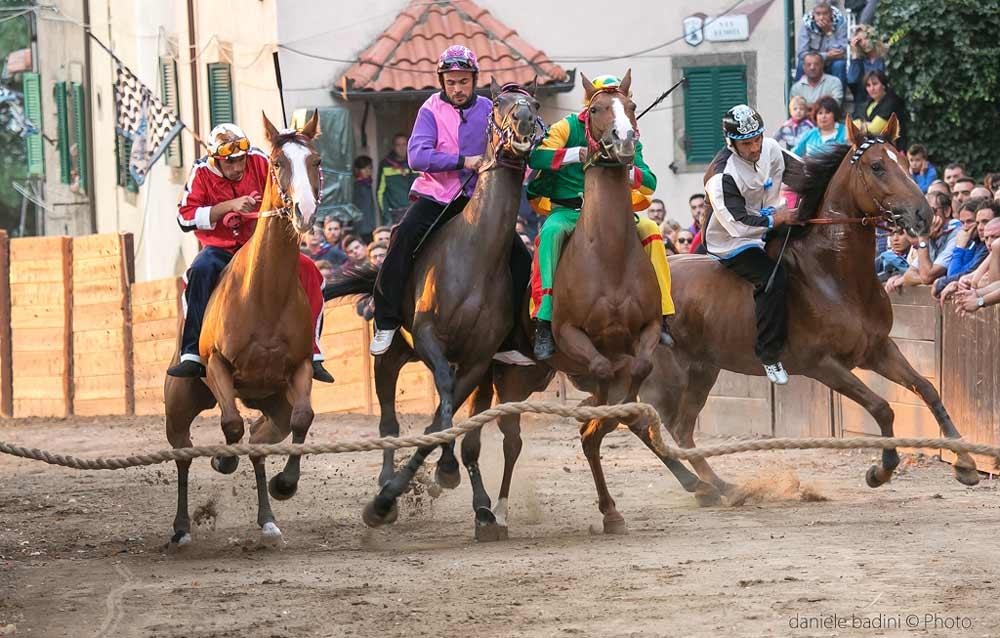 I quattro cavalli appena partiti dopo che il Canape abbassato
