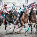 La mossa dei cavalli