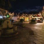 Gli alberi di fronte al Palazzo comunale vengono allestiti a festa
