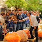 Spettatori che ammirano le zucche giganti