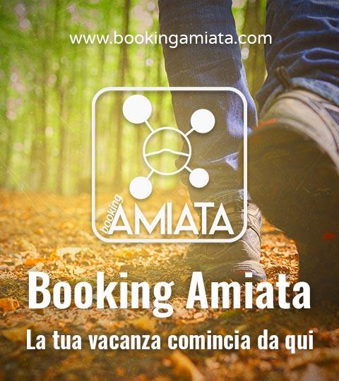 banner bookingamiata
