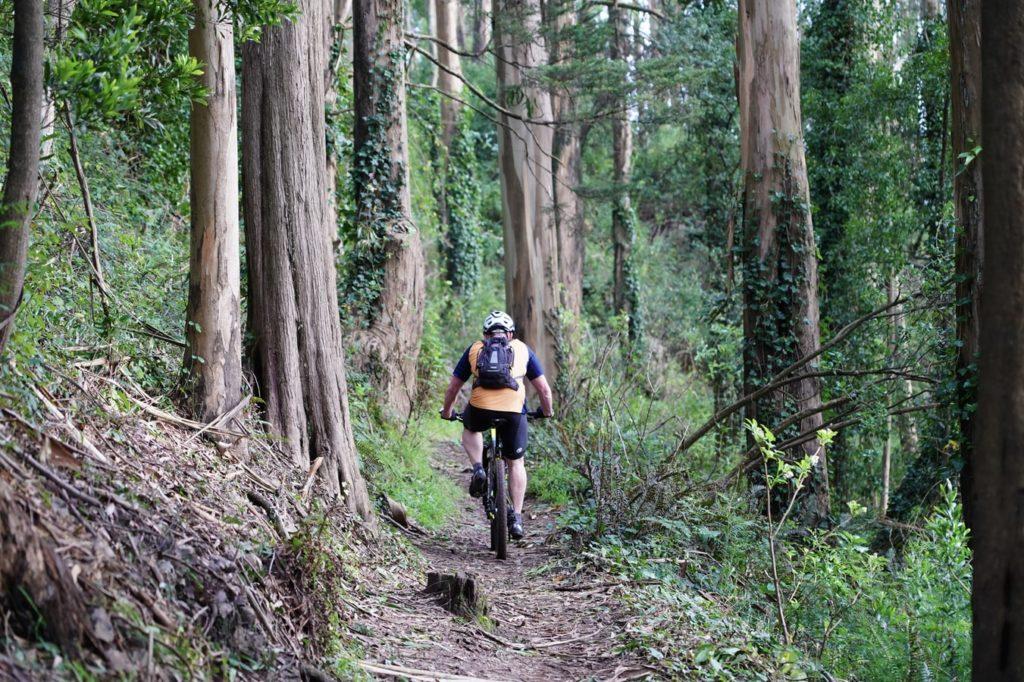 Un ciclista in sella alla propria mountain bike