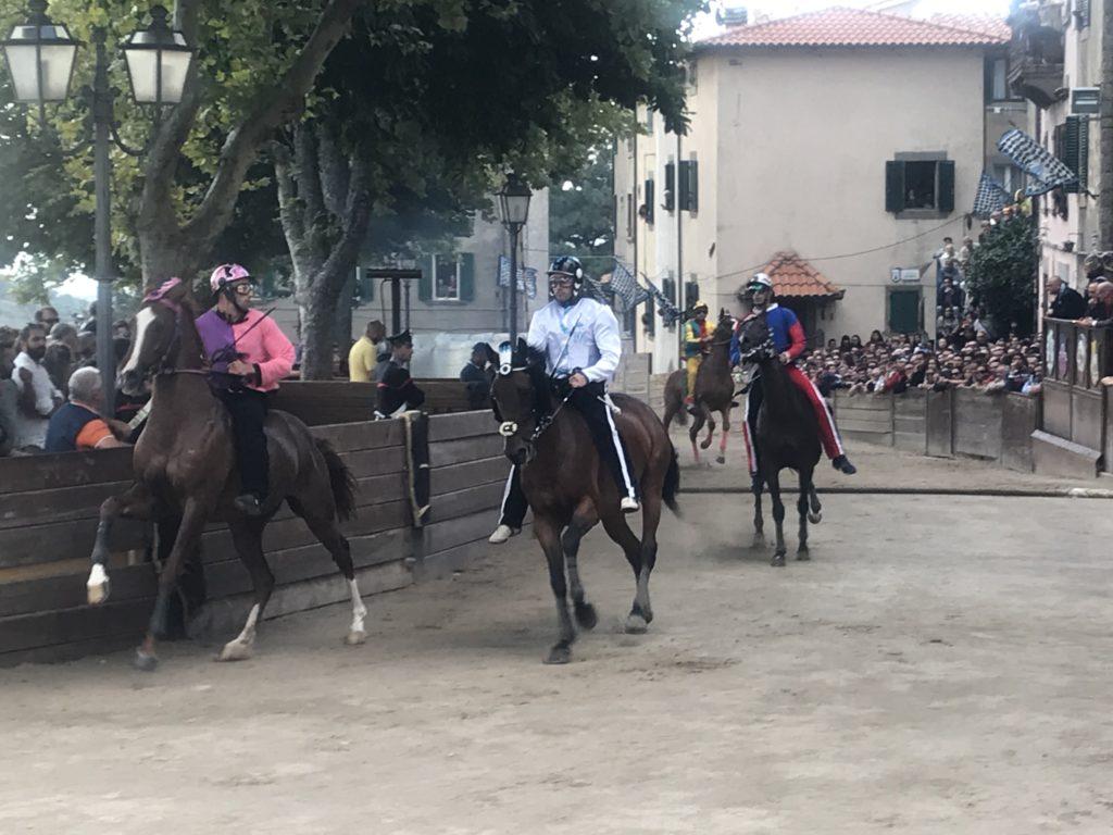 Foto dei quattro cavalli, durante una mossa falsa